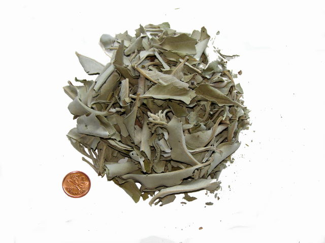 Loose White Buffalo Sage For Smudging - Smudging Supplies of all kinds, free info on how to smudge with purchase – Free shipping over $60.